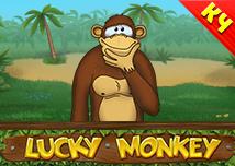igrovoi-avtomat-lucky-monkey