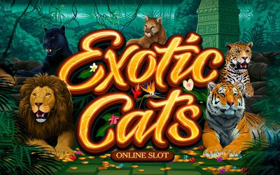 Microgaming-Exotic-Cats